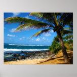Hawaiian Paradise Posters