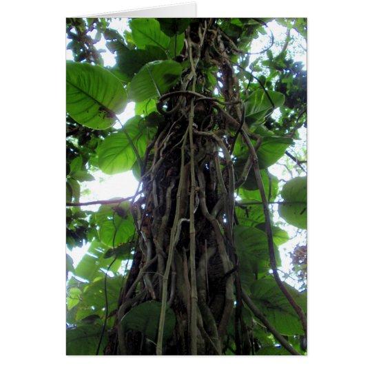 Hawaiian Philodendron Vines Card