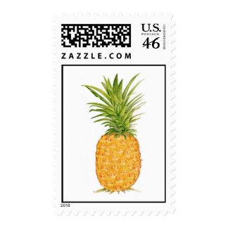 Hawaiian Pineapple Postage Stamp