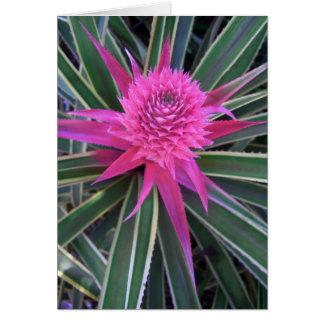 Hawaiian Pink Pineapple Greeting Card