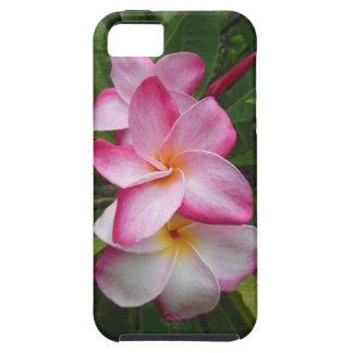 Hawaiian Plumeria iPhone 5/5S Covers