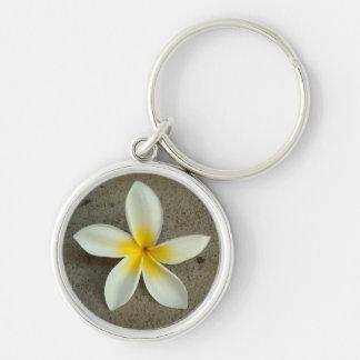 Hawaiian plumeria flower keychain