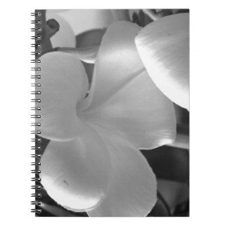 Hawaiian Plumeria Flowers in Black and White Notebook