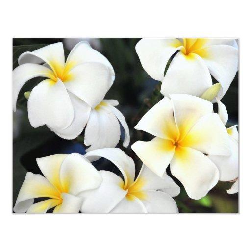 "Hawaiian Plumeria Flowers Invitation 4.25"" X 5.5"" Invitation Card"