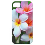 Hawaiian Plumeria flowers iPhone 5 Covers
