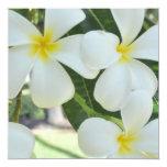 "Hawaiian Plumeria Wedding Invitation 5.25"" Square Invitation Card"
