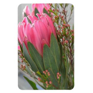 Hawaiian Protea Flowers Magnet