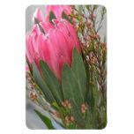 Hawaiian Protea Flowers Vinyl Magnets