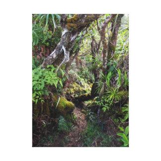 Hawaiian Rain Forest Canvas Print