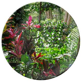 Hawaiian Rainforest Plate