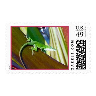 Hawaiian Reptile Postage