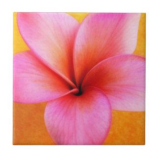 Hawaiian rosado de la flor de Hawaii del Azulejo Cuadrado Pequeño