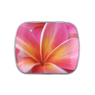 Hawaiian rosado de la flor de Hawaii del Frangipan Jarrones De Caramelos