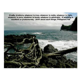 Hawaiian Seascape Postcard