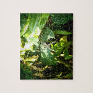 Hawaiian spider puzzle