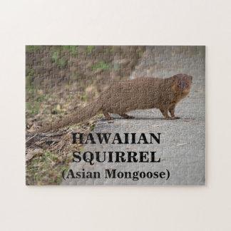 Hawaiian Squirrel (Asian Mongoose) Photo Puzzle