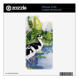 Hawaiian Stilts (Ae'o) iPhone 4 Skins