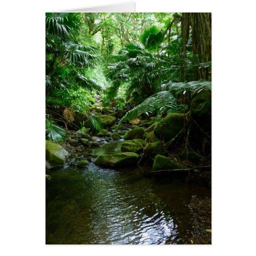 Hawaiian Stream Greeting Card
