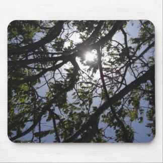 Hawaiian Sun through leaves Mouse Pad