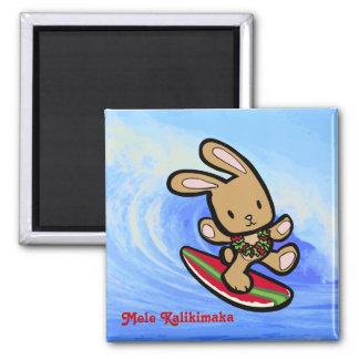 Hawaiian Surfing Bunny Christmas Magnet