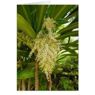 Hawaiian Ti Plant Blossom Card
