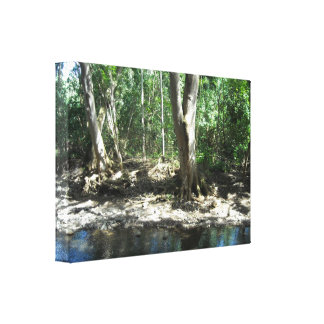 Hawaiian Trees Stretched Canvas Print