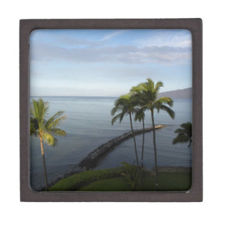 Hawaiian Tropical Beach Scene Keepsake Box Aqua