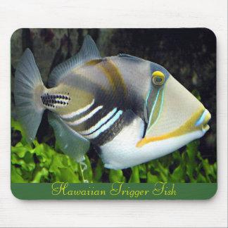 Hawaiian Tropical Fish Mousepad