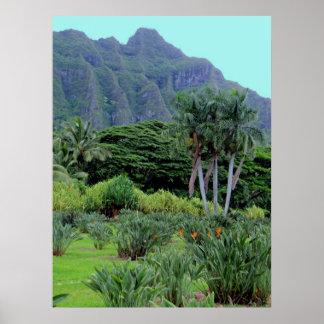 Hawaiian Tropical Grandeur Poster