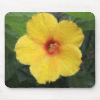 Hawaiian Tropical Hibiscus Mousepads