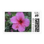 Hawaiian Tropical Pink Hibiscus Stamps