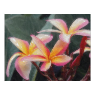 Hawaiian Tropical Plumeria Poster
