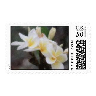 Hawaiian Tropical Plumeria Stamps