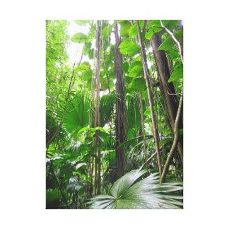 Hawaiian Tropical Rain Forest Canvas Print