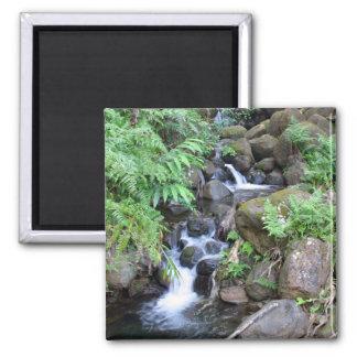 Hawaiian Tropical Stream 2 Inch Square Magnet