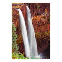 Hawaiian Waterfall Photo Print
