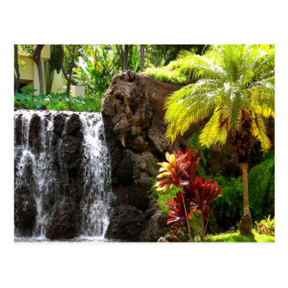 Hawaiian Waterfalls Postcard