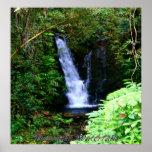 Hawaiian Waterfalls Posters