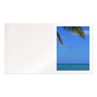 Hawaiian Waters Double-Sided Standard Business Cards (Pack Of 100)