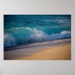 Hawaiian Waves Poster