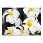 "Hawaiian White Plumeria Invitation 4.5"" X 6.25"" Invitation Card"
