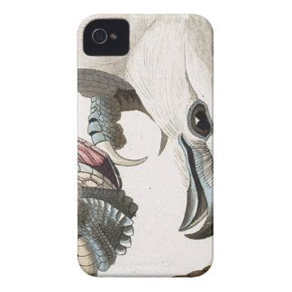 Hawk and Snake Illustration iPhone 4 Cover