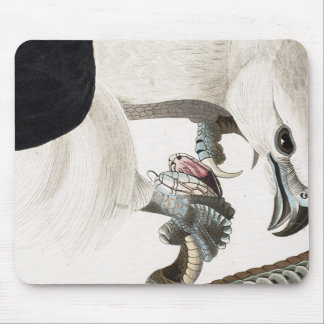 Hawk and Snake Illustration Mouse Pad