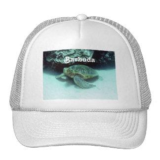 Hawk Billed Turtle Mesh Hats