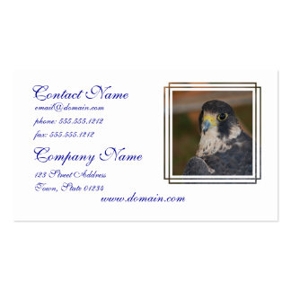 Hawk Double-Sided Standard Business Cards (Pack Of 100)