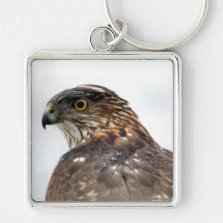 Hawk close up keychain