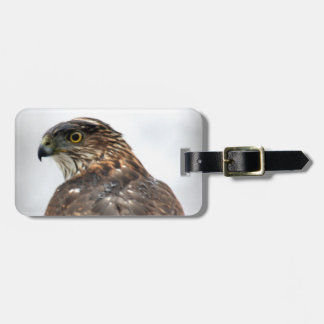 Hawk close up photo tag for bags