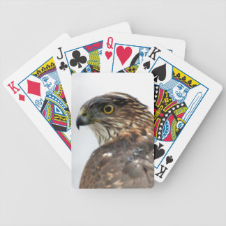 Hawk close up bicycle playing cards