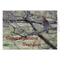Hawk Congratulations - customize any occasion Card