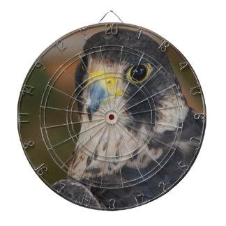 Hawk Dart Boards